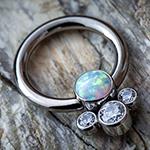PRE-ORDER Titanium captive with cluster gems