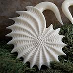 Bone Mollusk design
