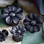 Arang wood wildflower plugs