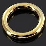 Gold colored segment ring