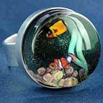 Steel and pyrex glass aquarium ring (Adjustable)