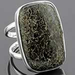Sterling silver and dinosaur bone ring (Size 8)