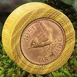 Osage orange plugs with British coin inlays