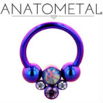 PRE-ORDER Titanium circular barbell with cluster center
