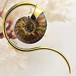 Solid brass and ammonite swan weights